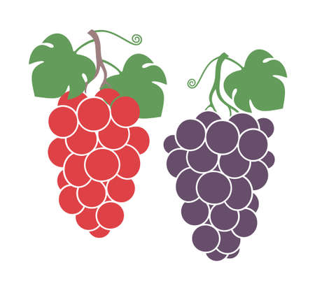 leaf logo: Grapes set. Isolated grapes on white background.
