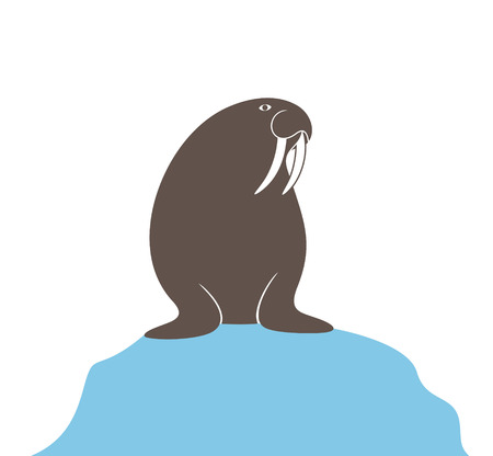 Walrus logo. Isolated walrus on white background