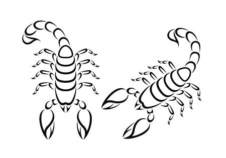 Outline scorpion. Isolated scorpion on white background Illustration