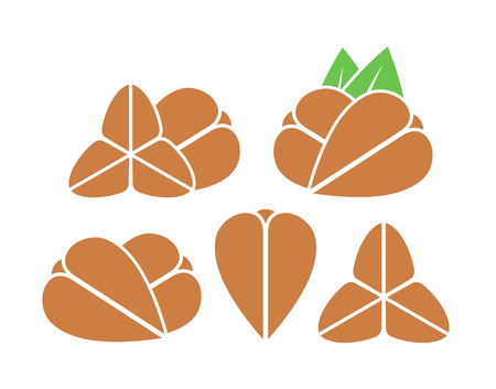 Buckwheat icon illustration. Isolated buckwheat on white background.