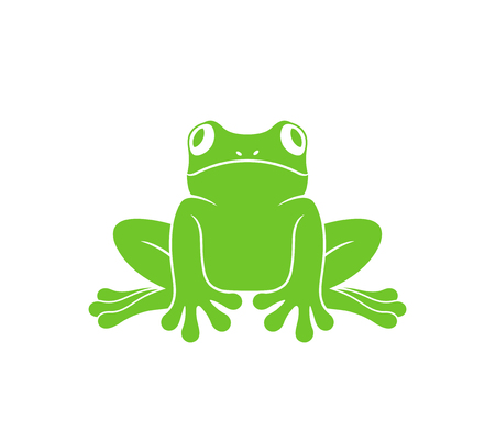 Red eye frog. Tree frog. Isolated frog on white background