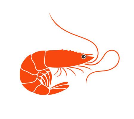 Shrimp icon. Isolated shrimp on white background Vector illustration.