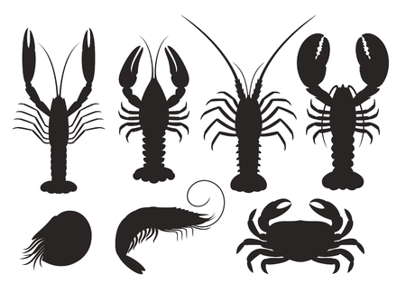Set of vector silhouettes lobster, crab, spiny lobster, shrimp, nautilus, crayfish, langoustine. Seafood