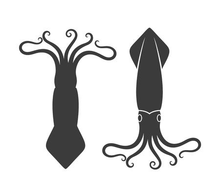 오징어 세트. 흰색 배경에 고립 된 오징어