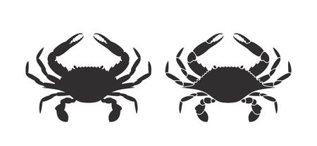 Geïsoleerde krab op witte achtergrond