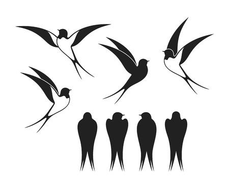 Logo slikken. Geïsoleerde zwaluw op een witte pagina. Vogel