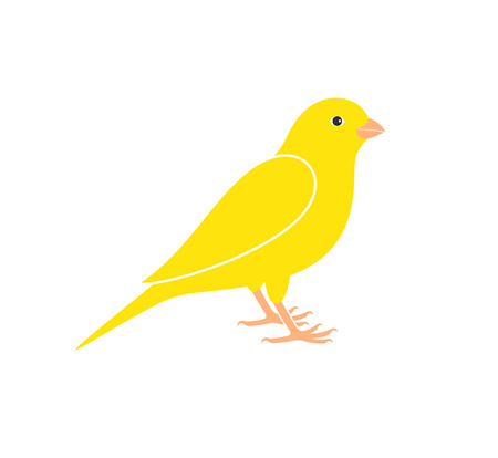 Canary logo. Isolated canary on white background