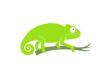Green chameleon. Abstract chameleon on white background Illustration