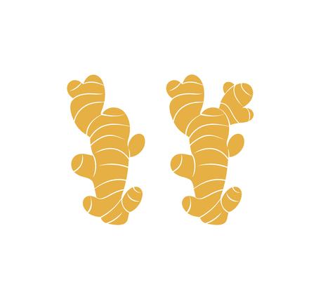 Logo de gingembre. Gingembre isolé sur fond blanc