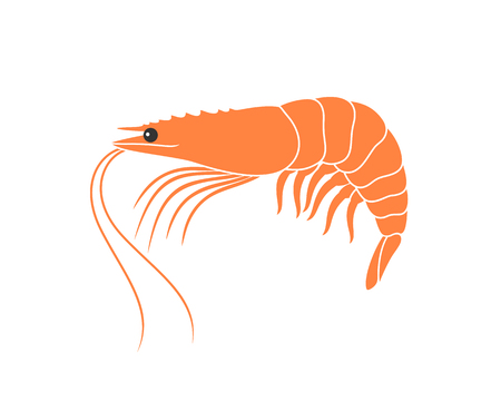 Tiger shrimp logo. Isolated shrimp on white background. Prawns