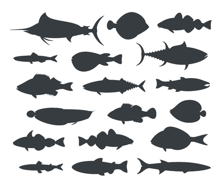 Fish silhouette. Isolated fish on white background Illustration