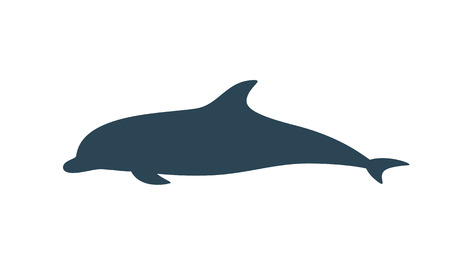 Dolphin silhouette. Isolated dolphin on white background