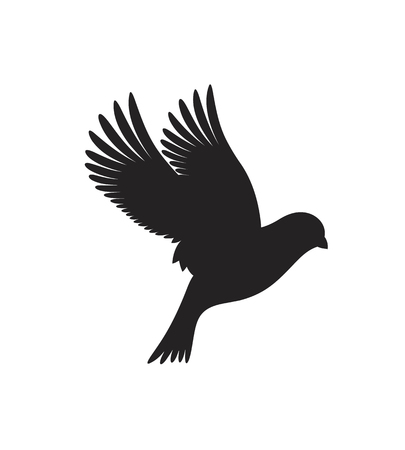 Canary silhouette. Isolated canary on white background. Bird Illustration