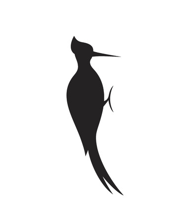 Woodpecker silhouette. Isolated woodpecker on white background
