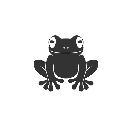 Tree frog. Isolated frog on white background