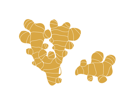Ginger logo. Isolated ginger on white background  イラスト・ベクター素材