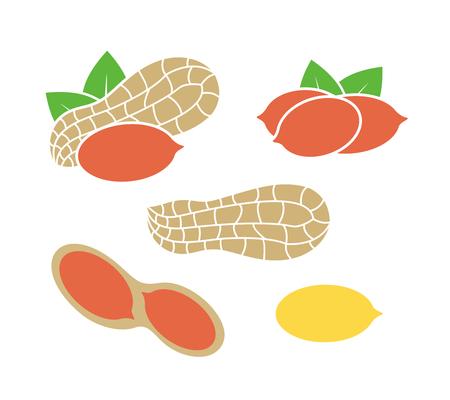 Peanut logo. Isolated peanut on white background