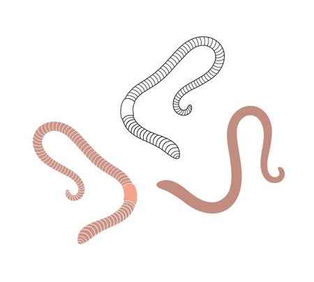 Earthworm logo. Isolated earthworm on white background