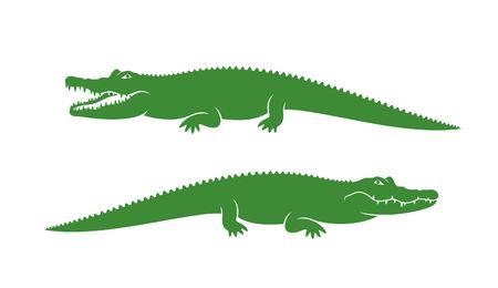 Abstract crocodile on white background Çizim