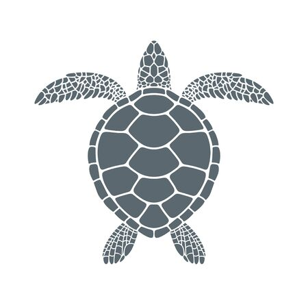 Isolated turtle on white background. Reptile Ilustración de vector