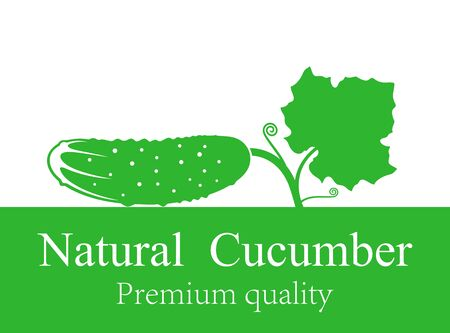 Cucumber icon. Isolated cucumber on white background