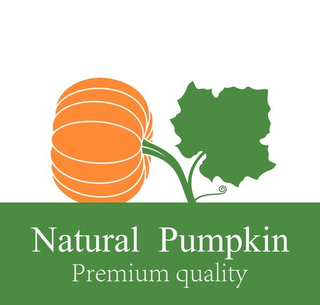 Pumpkin icon. Isolated pumpkin on white background Ilustração