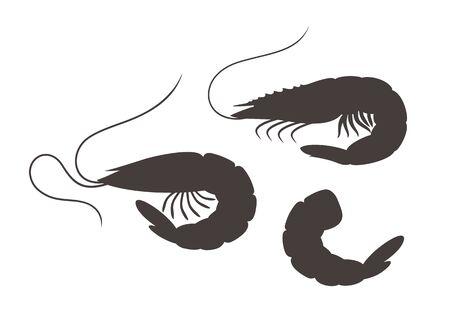 Shrimp silhouette. Isolated shrimp on white background. Prawns