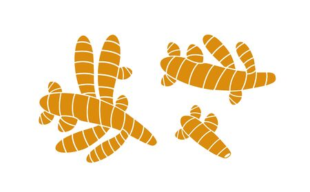 Turmeric logo. Isolated turmeric on white background