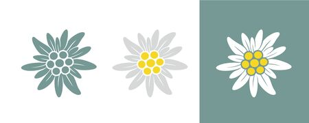 Edelweiss logo. Isolated edelweiss on white background Ilustrace