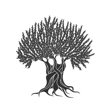 Olive tree logo. Isolated olive tree on white background