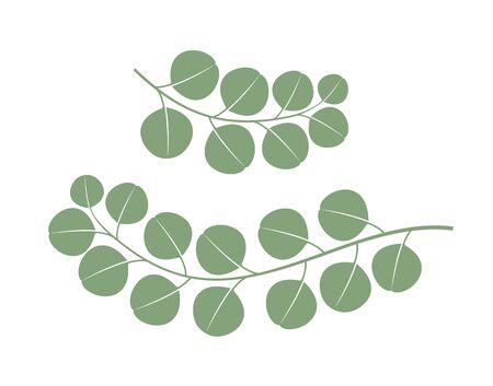 Eucalyptus logo. Isolated eucalyptus on white background Ilustrace