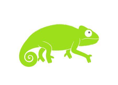 Green chameleon logo. Abstract chameleon on white background
