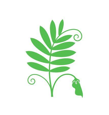 Lentil logo. Isolated lentil on white background Ilustrace