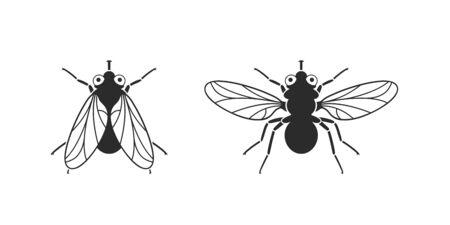 Fly logo. Isolated fly on white background
