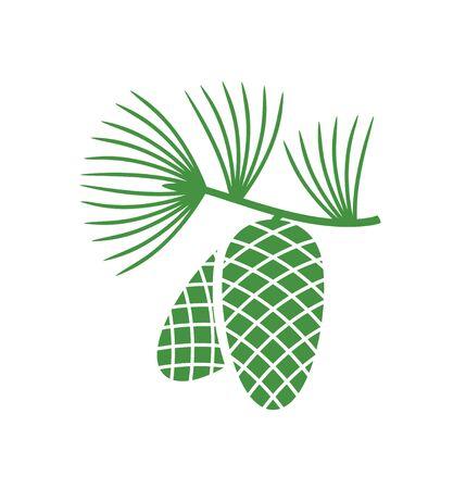 Pine logo. Isolated pine on white background Ilustrace