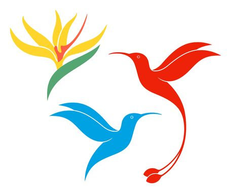 Koliber logo. Na białym tle koliber na białym tle