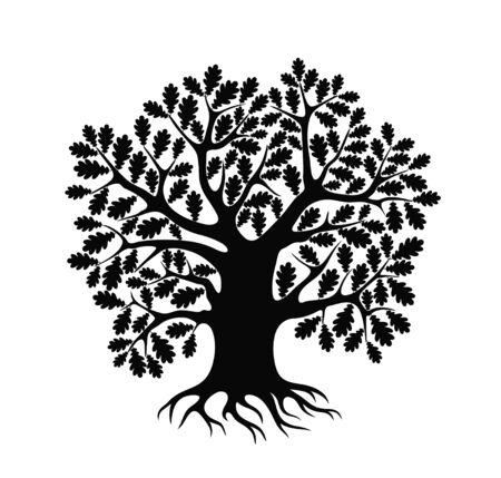 Oak tree logo. Isolated oak tree on white background Ilustrace
