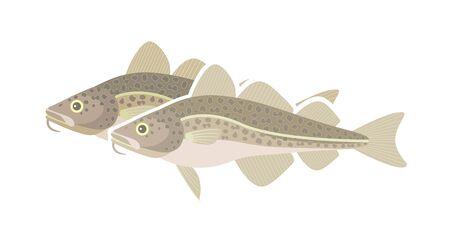 Logo del merluzzo dell'Atlantico. Merluzzo isolato su sfondo bianco