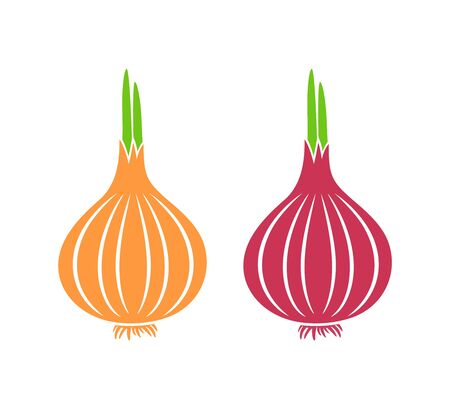 Onion logo. Isolated onion on white background