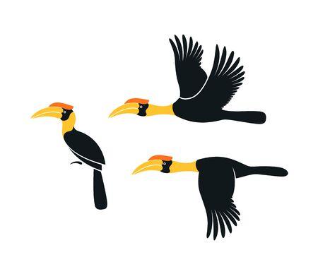 Hornbill logo. Kalao. Isolated hornbill on white background Logo