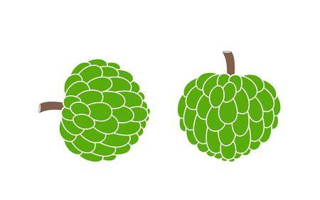 Custard apple. Isolated custard apple on white background