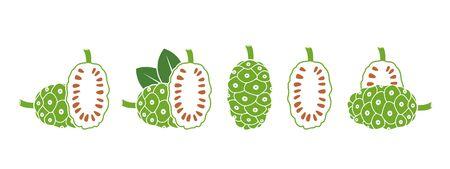 Noni fruit. Isolated noni fruit on white background