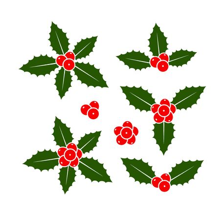 Holly berry set. Isolated holly berry on white background. Christmas Ilustracja