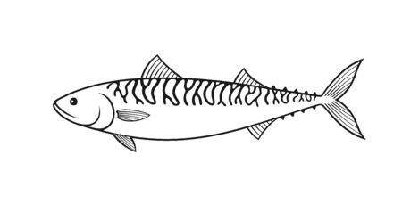 Mackerel outline. Isolated mackerel on white background Vecteurs