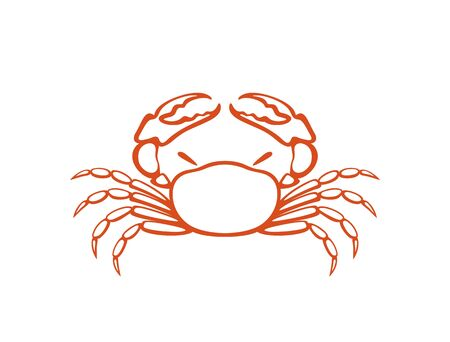 Crab. Isolated crab on white background