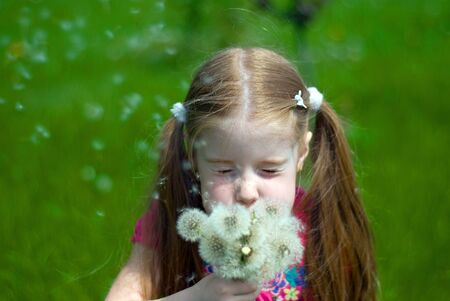 little girl on a green meadow blowing a bouquet of dandelions