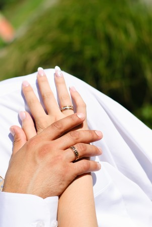 grooms hand holding brides hand with a wedding bands