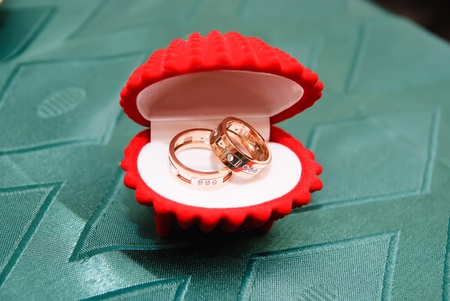 two wedding bands in a red shell photo