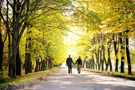 couple WALKING: couple walks away down the park alley