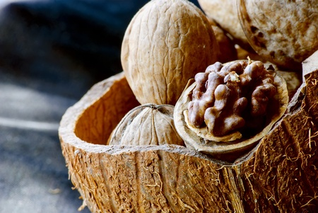 Walnuts in the shell of coconut. One is opened. Close-up. Stock Photo